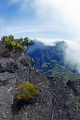 Sommet du Maïdo, La Réunion
