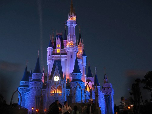Walt disney world at night