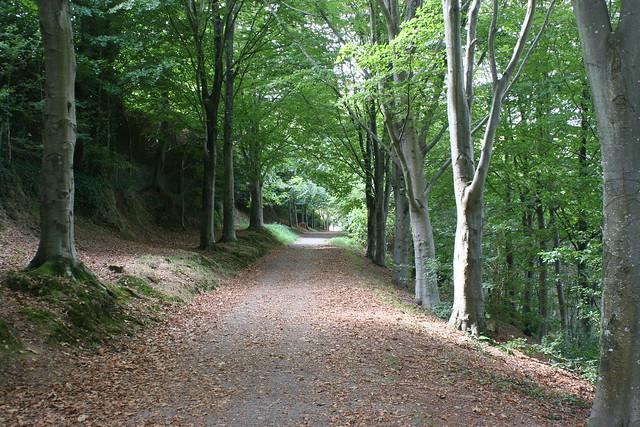 Promenade à Quimper II