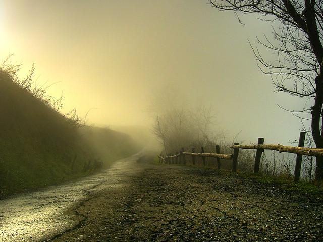 Nebbia ed apparenza