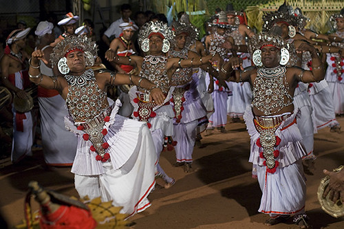kohomba kankariya