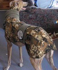 Greyhound Coat Knitting Pattern | eBay - Electronics, Cars