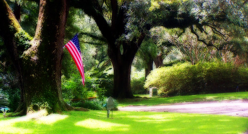 blue red white tree green photoshop manipulated landscape oak louisiana outdoor flag spanishmoss starsandstripes orton 2007 oldglory abbeville 1357 mywinners irresistiblebeauty superbmasterpiece