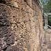 Small photo of Laterite Walls