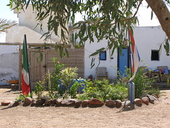 Patch in the yard with Dutch and Mexican flag