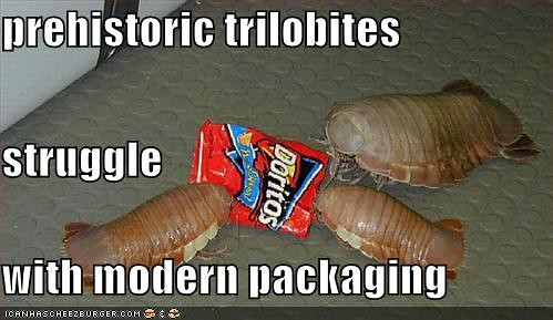 Why the trilobites went extinct | Flickr - Photo Sharing!