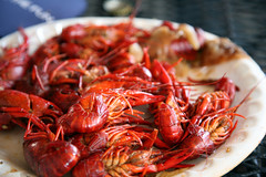 shrimp, animal, seafood boil, dendrobranchiata, caridean shrimp, lobster, crustacean, seafood, invertebrate, produce, food, dish, cuisine,