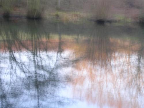 fuzzy reflection