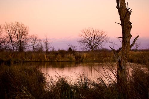 pond nikon dusk d40 acreestudios utata:project=tw91