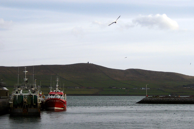 The picturesque Dingle Harbor in County Kerry, Ireland.