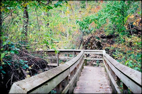 travel forest nikon missouri springfield ozarks fantasticcaverns d40 vob canyontrail acreestudios