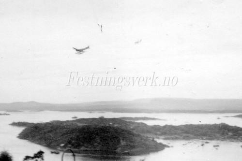 Ekeberg (1946)
