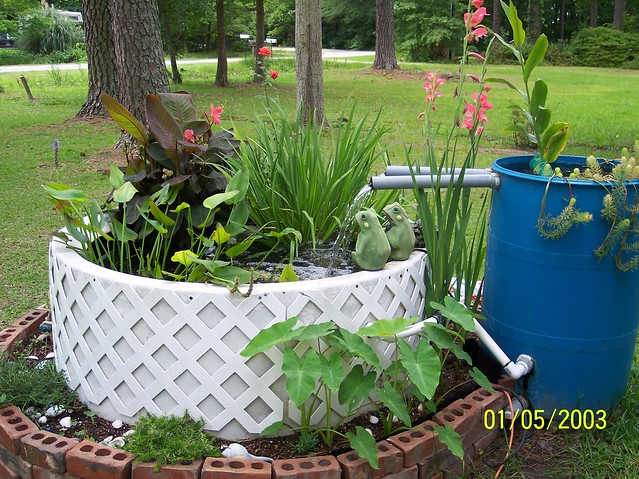 Our Beautiful Homemade Fish Pond Flickr Photo Sharing