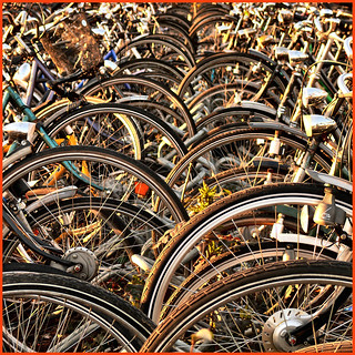 waves of bicycles