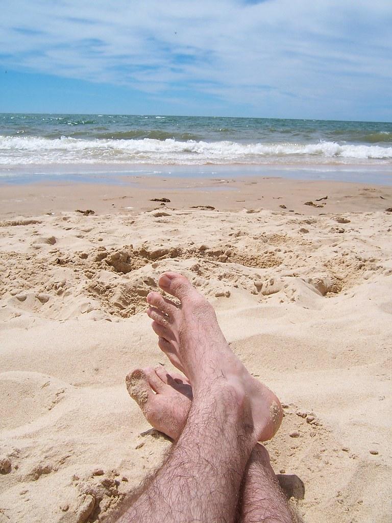 Gaby ao t 2008 for Comment s occuper d un palmier