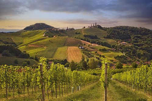 ratsch südsteiermark styria austria landscape hills vinery sunset green summer light shadow texture raya pro greatphotgraphers outdoor soft