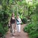 Fairchild gardens by Gardening Solutions