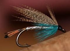 Flies & Fishing