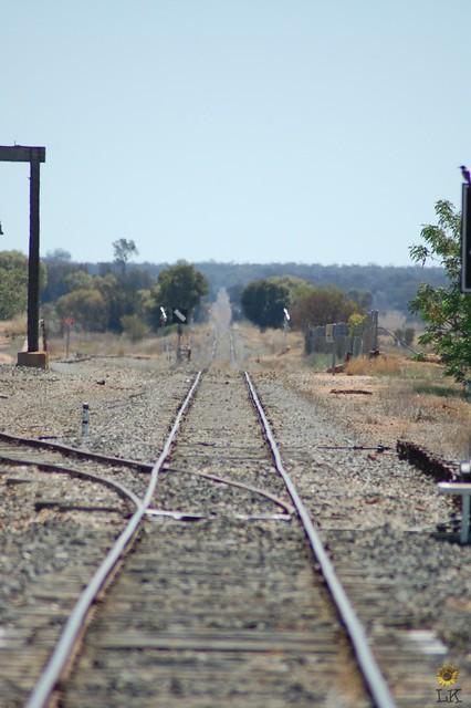Albert, NSW. Albert Railway Station