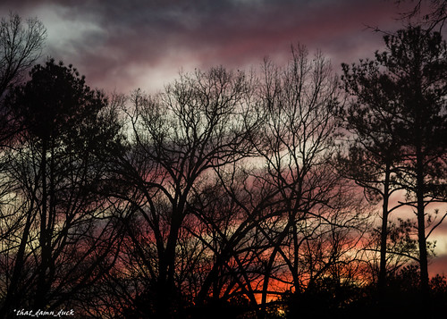 nature dawn clouds trees colorful