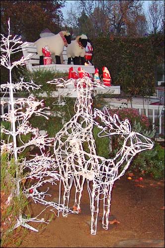 Outdoor christmas decorations deer decorations deer for Christmas deer outdoor decorations