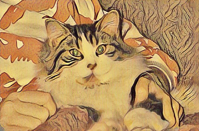 Sweet Mitzi In My Lap Gentle Colors Of Dawn Photo Art