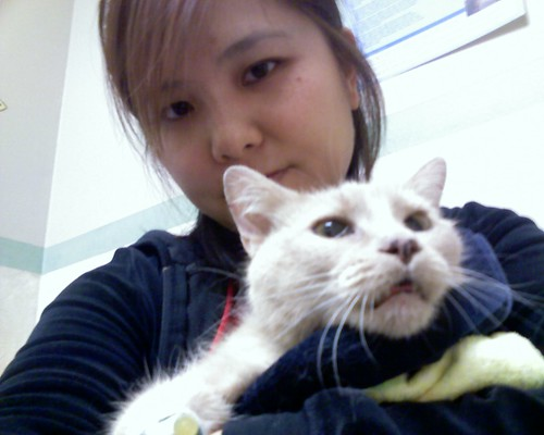 Cuddling with my sick kitty