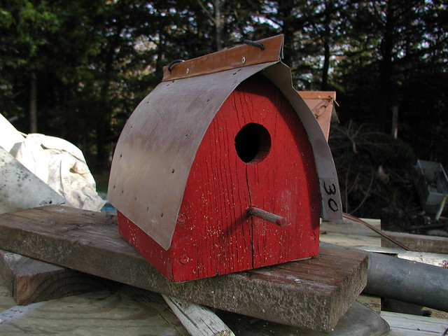 pa200141 jpg steve 39 s handcrafted bird houses different