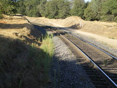 Lower track looking west
