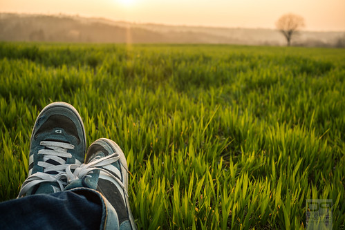 light sunset sun tree field grass relax shoes tramonto loneliness erba campo sole luce scarpe solitudine