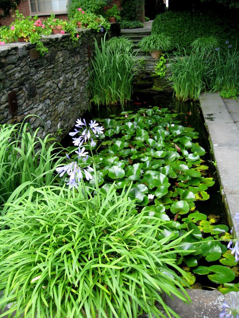 Rectangular Garden Pond | Lauren Jolly Roberts | Flickr