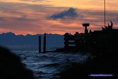 styles d'image photo paysage mer coucher de soleil