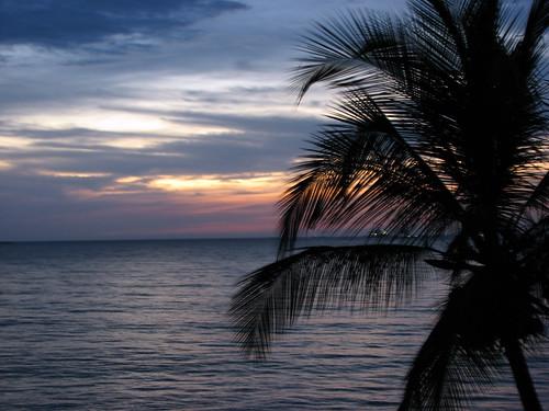 ocean sunset sea sky costa color dawn coast mar colombia colores palm cielo caribbean puestadesol pops untouched palmera santamarta soe oceano caribe caribean sinretoques platinumphoto impressedbeauty popotito platinumphotography