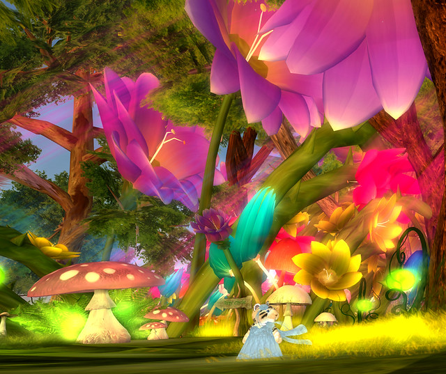 Visiting a fabulous fae fantasy forest