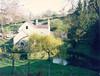Daniels Mill spring 2