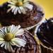 Rum and peanut butter cupcake by jhakkinen