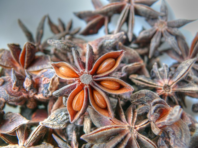 013/366 - Star anise HDR