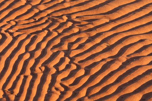 canada roma texture beach sand pattern pei fingerprint