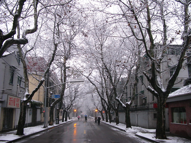 Shanghai's French Quarter Covered with Snow