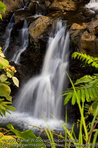 hawaii hilo okfarms slocummedia danielslocum