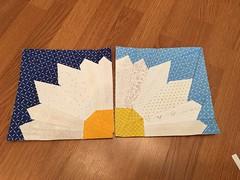 Quilt blocks I made for Linda
