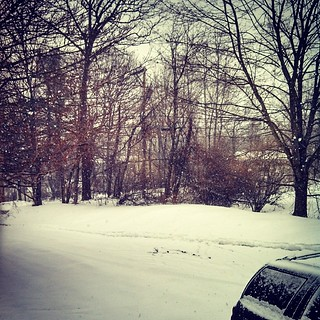 FU mother nature, FU. #winterwontend #snow #newengland #snowing No Longer a #winterwonderland