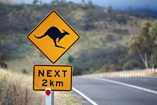 Roos next 2km