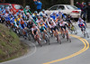 front of the peloton summits at shoreline hwy (US 1) by Super G