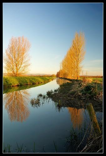 uk england reflection water sunrise river landscape dawn gloucestershire rivercam avision nikond300 bestofbritishnature