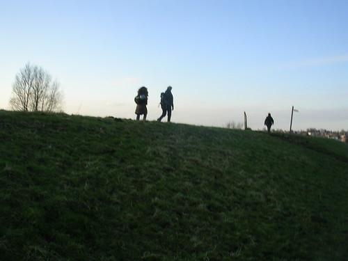 Along the dyke