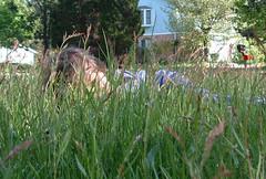 Lawn Monster