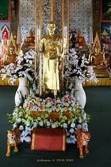 20101213_4343 Temples at San Pa Tong, วัดทึ่สันป่าตอง