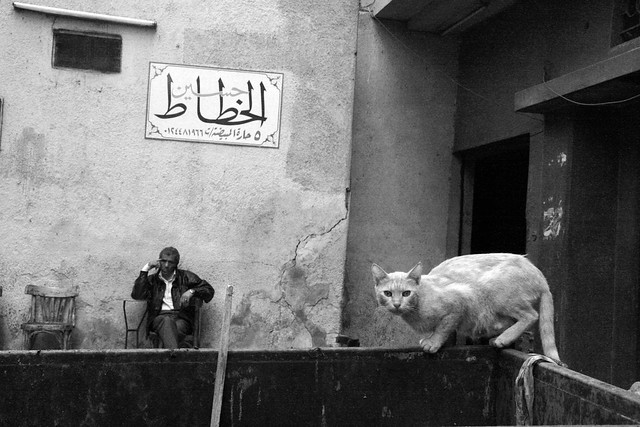 Al acecho- Fantastic Black and White Street Photographs