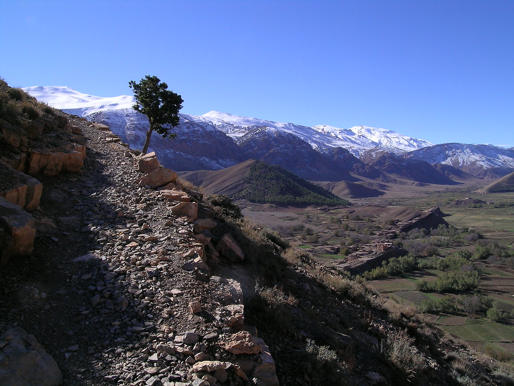 En las cercanías de Agouti. Fuente